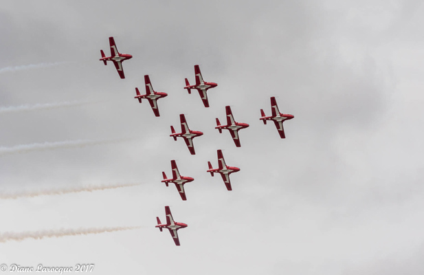 Diane_Larocque_-_Snowbirds_des_Forces_canadiennes